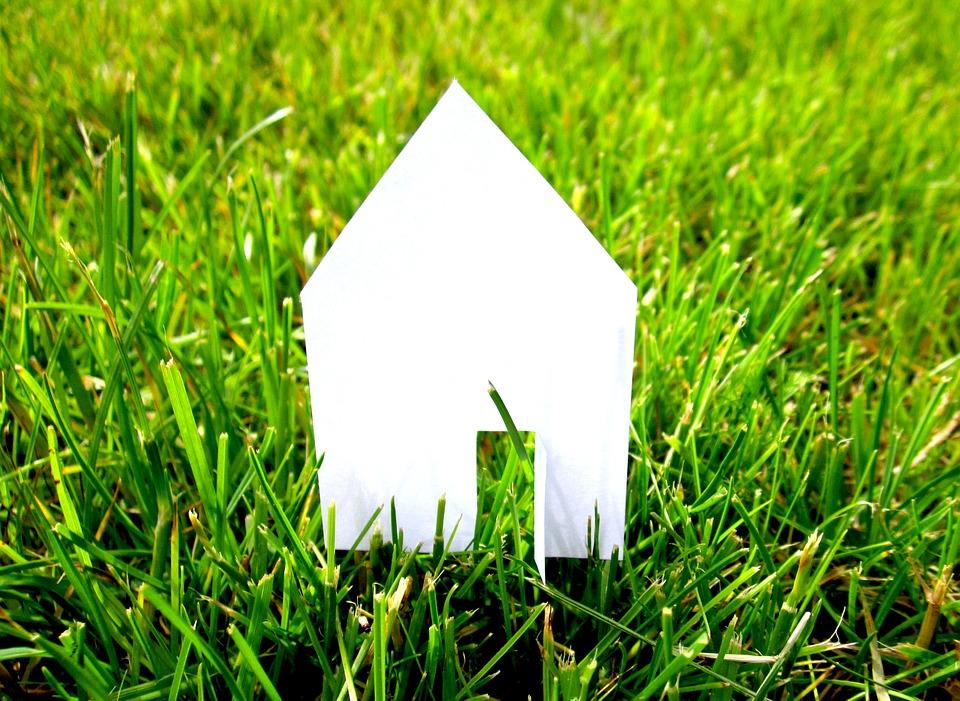 dům v trávě